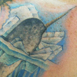 Tattoo of Narwhal